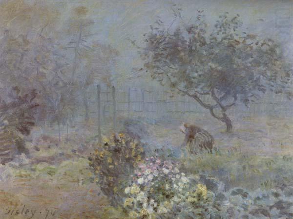 Foggy Morning,Voisins