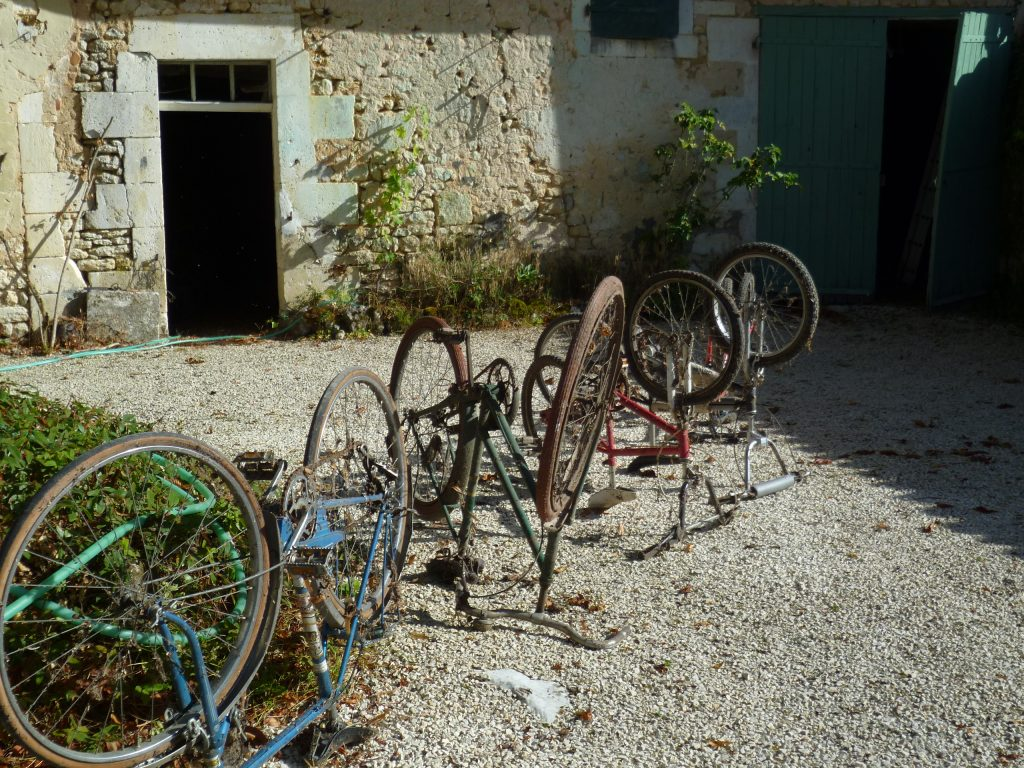 bicyzarres